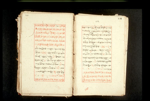 Folios 441v (right) and 442r (left)